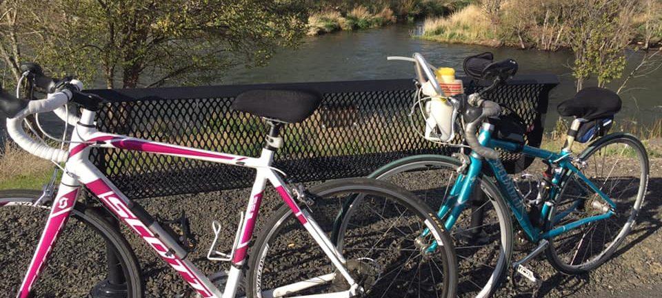 Pedals & Ponderings